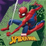 SPIDERMAN TEAM UP TWO PLY PAPER NAPKN 33X33CM 20CT