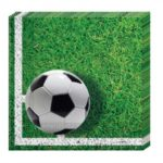 FOOTBALL PARTY TWO PLY PAPER NAPKINS 33X33CM 20CT